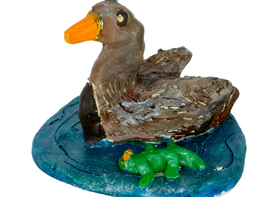 Wetlands Duck