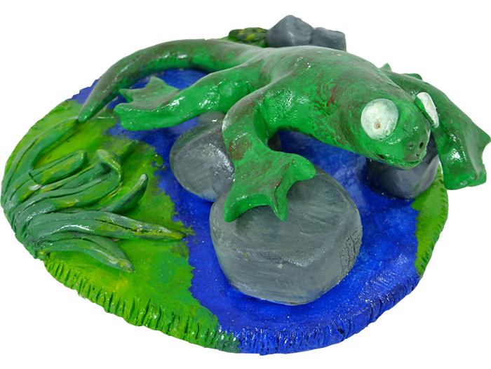 Wetlands – Frog